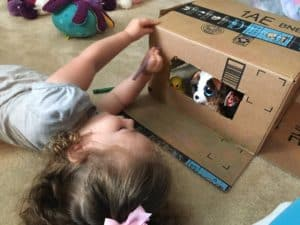 cardboard box activity for preschoolers