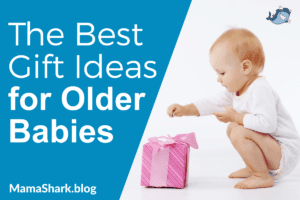 Gift Ideas for Older Babies and Toddlers