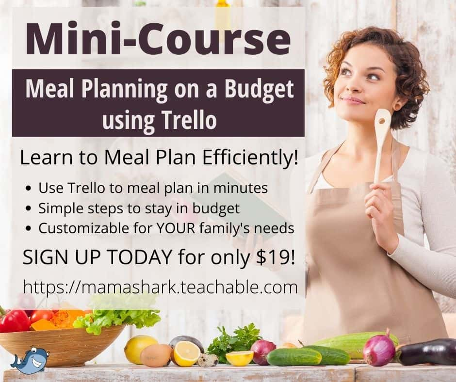meal planning on a budget mini-course